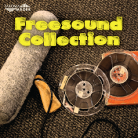 Freesound-Collection-300